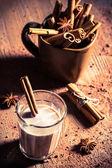 Closeup of cocoa milk with cinnamon bark — Stock Photo