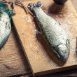 Closeup of freshly caught fish for dinner — Стоковая фотография