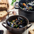 Closeup of ingredients for a dish cooked with mussels — Stock Photo
