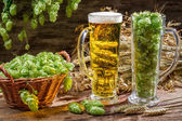 Hops and grains as ingredients for beer — Stock Photo