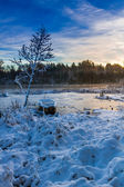 Frozen lake in winter at sunrise — Stock fotografie