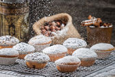 Vanilla muffins decorated with icing sugar — Stock Photo