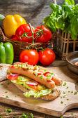 Closeup of fresh hot dog with mustard and ketchup — Stock Photo