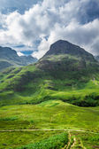 Green highlands in summer Scotland — 图库照片
