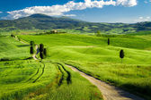 Beautiful view of the path between the fields in Tuscany — Stock Photo