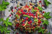 Chocolate cake made of mix wild berries — Stock Photo