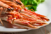 Feshly cooked scampi on a plate — Stock Photo