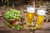 Cold beer surrounded by hops cones — Stock Photo