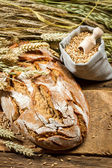 Freshly baked country bread — Stock Photo