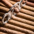 Guillotine and cigar on cigars pile — Stock Photo #39526547