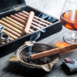 Aromof cognac and cigar fuming — Stock Photo #39526739