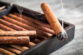 Ardiente puro humo en humidor antiguo — Foto de Stock