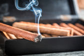 Closeup of burning cigar on wooden humidor — Stock Photo