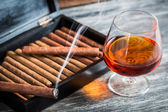 Burning cigar on humidor and cognac — Stock Photo