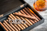 Wooden humidor full of cigars — Stock Photo