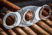 Guillotine cutting off cigar tip — Stock Photo