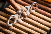Guillotine and cigar on cigars background — Stock Photo