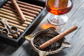 Cigars in humidor and cognac — Stock Photo