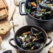 Fresh ingredients for a dish cooked with mussels — Stock Photo