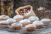 Vanilla muffins decorated with powder sugar — Stock Photo
