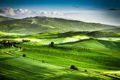 прекрасный вид на закат над зеленой долиной — Стоковое фото