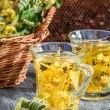 Tea made of lime and honey served in the garden — Stock Photo