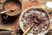 Cacao come componente del cioccolato artigianale — Foto Stock
