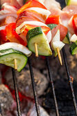 Skewers with vegetables on the grill — Stock Photo