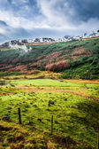 Valley in the mountains, Scotland — Stock Photo