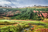 Autumn valley in the mountains, Scotland — Stock Photo
