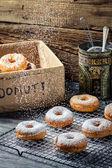 Closeup of falling icing sugar on fresh donuts — Foto Stock