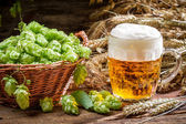 Small beer with a large foam surrounded by hops — Stock Photo