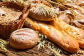 Various types of bread in a baker pantry — Foto Stock