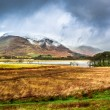Kilchurn Castle in Winter, Scotland — Stock Photo #41708167
