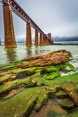 Bridge Firth of Forth in autumn — Stock Photo