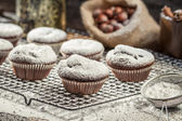 Vanilla muffins decorated with icing sugar — Foto de Stock
