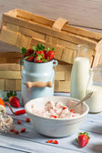 Ingredients for homemade strawberry ice cream — Stock Photo