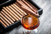 Burning cigar on glass with cognac — Stock Photo