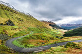 Argyll Forest Park, Highland in Scotland — Stock Photo