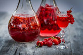 Liqueur made of wild berries — Stok fotoğraf