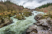Wild mountain river in the foothills — Stock Photo
