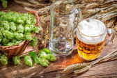 Freshly harvested hop cones and cold beer — Stok fotoğraf