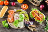 Ingredients for homemade hot dog — Stock Photo