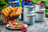 Waffles with whipped cream and fruit — Stock fotografie