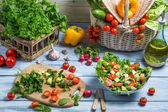 Preparing a healthy vegetable salad — Stock Photo