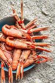 Düz denizden gelen taze deniz ürünleri — Stok fotoğraf