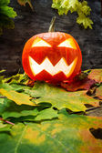 Glowing halloween pumpkin on autumn leaves — Stock Photo