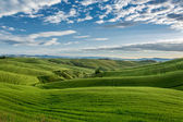 Green field and blue sky in Tuscany — 图库照片