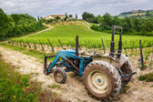 Field with vines and old tractor in Tuscany — Stock fotografie
