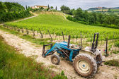 Fields full of vines and blue tractor in Tuscany — Stock fotografie